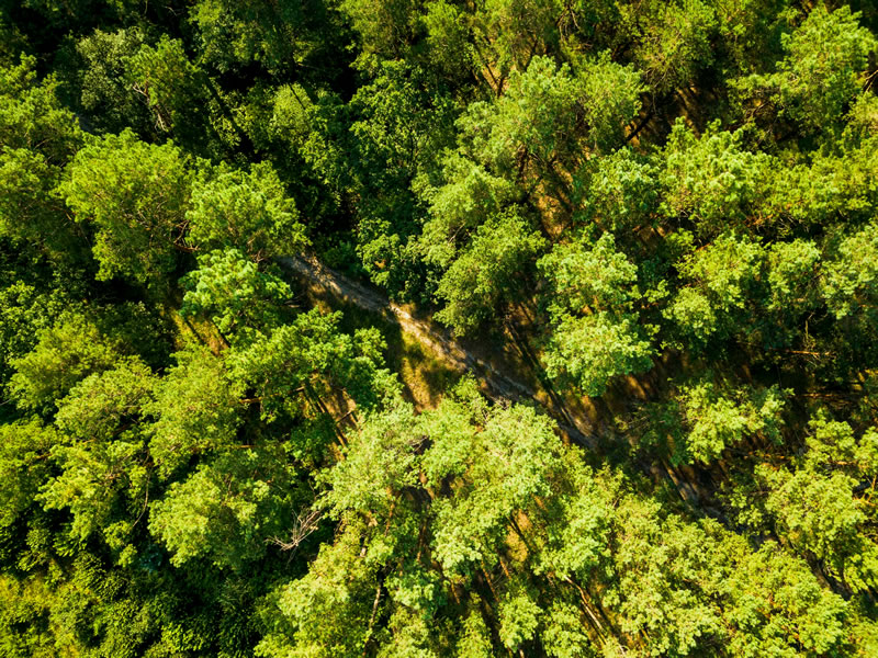 aerial-view-from-the-drone-of-environmentally-frie-4PX2ZQA